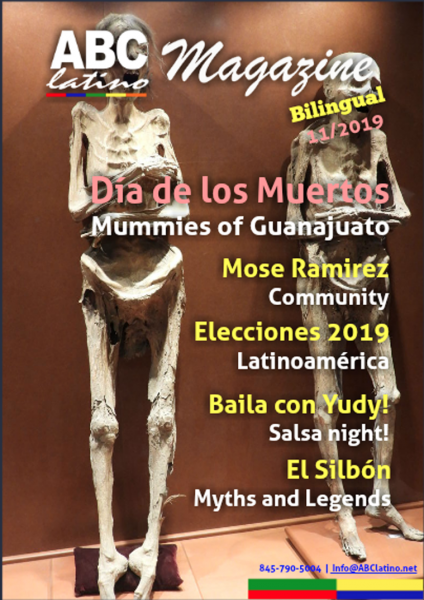 Cover 3-11