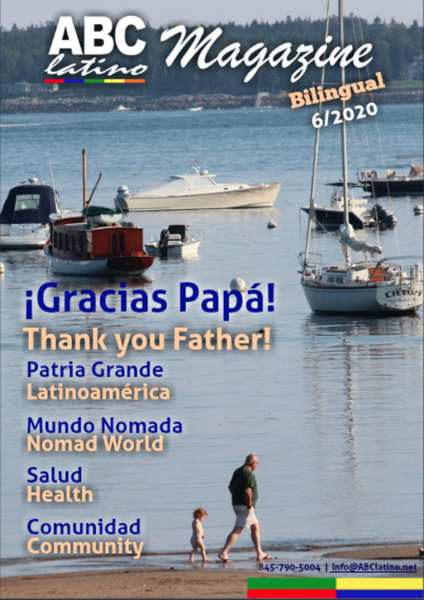 Cover 4-6